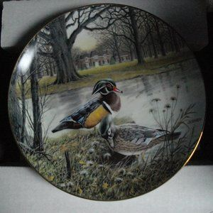 Other - duck collectable plate